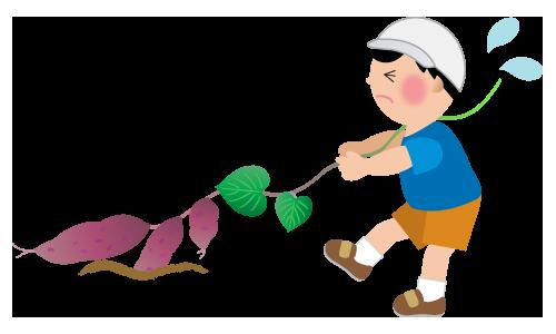 芋掘りをする男の子のイラスト