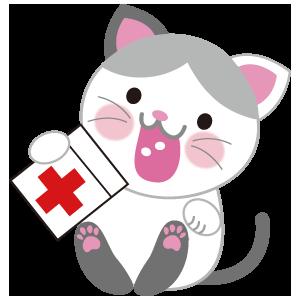 ネコとお薬