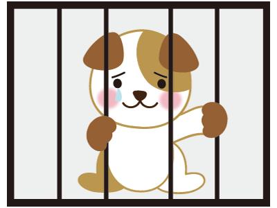檻の中の犬