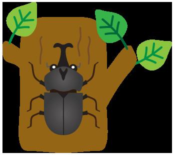 木とカブトムシ