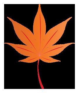 もみじの葉っぱのイラスト