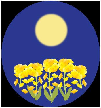 おぼろ月と菜の花