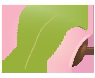 桜餅長命寺