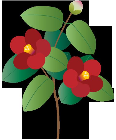 冬の花 椿 水仙 南天 ふでこや 無料イラスト